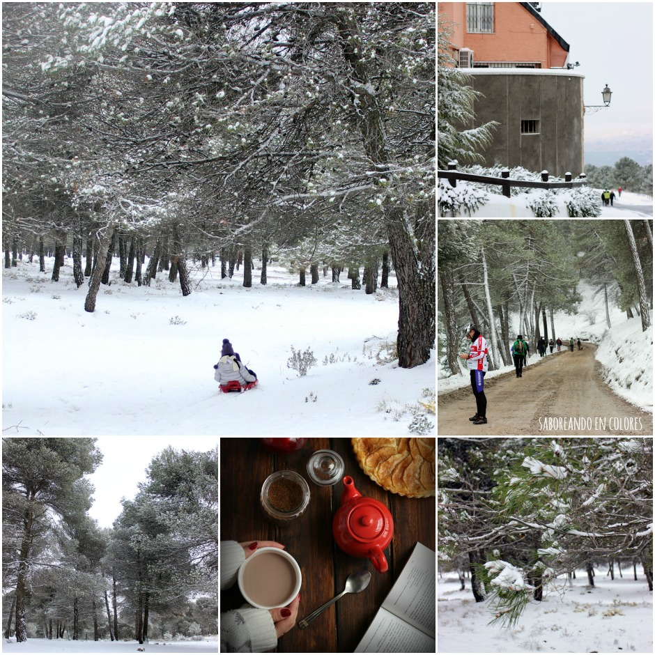 nieve Collage